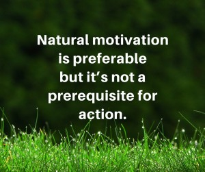natural motivation